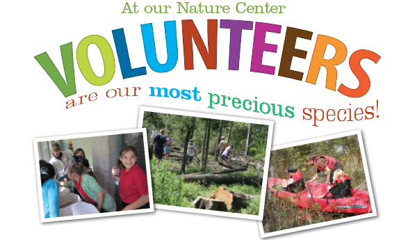 Volunteer at the Houston Arboretum
