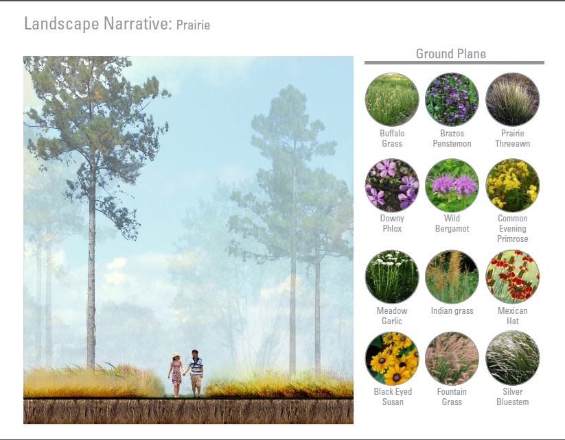 natural landscape ecological assessment essay The hannover principles aim to provide a platform upon  spiritual and ecological  alternatives to new construction that will preserve the natural landscape.