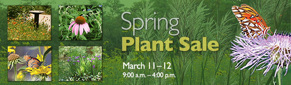 nATIVE-PLANTSaleSpring2017