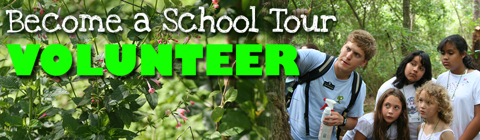 school-tour-volunteer