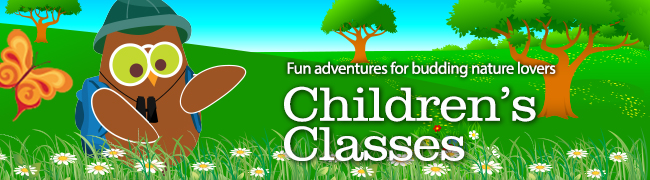 Childrens-Classes-Banner